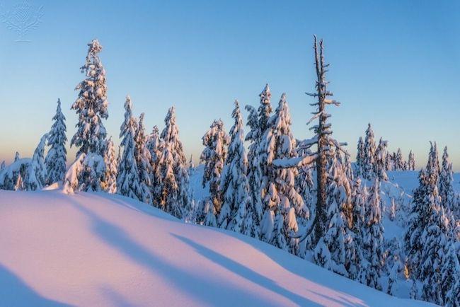 Snow scene, Winter, Mount Seymour Provincial Park, N. Vancouver, British Columbia, Canada - British Columbia