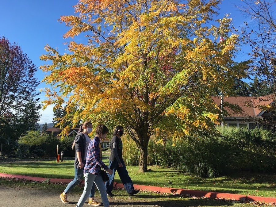 Students walking on the WSA campus in the fall
